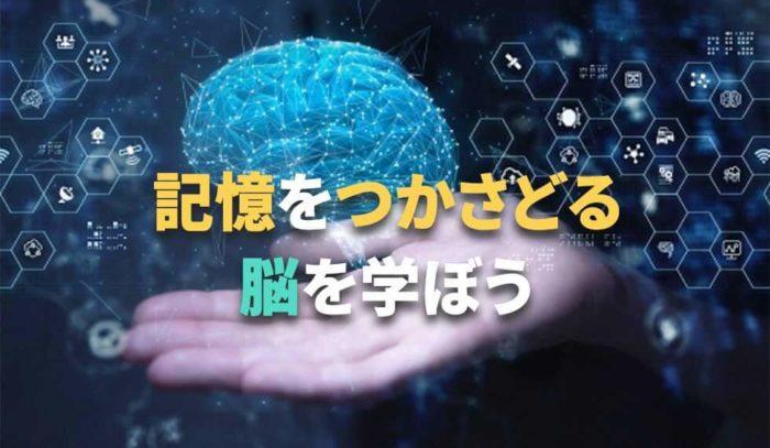 記憶をつかさどる司令塔『脳』の構造と働きを楽しく学ぼう!