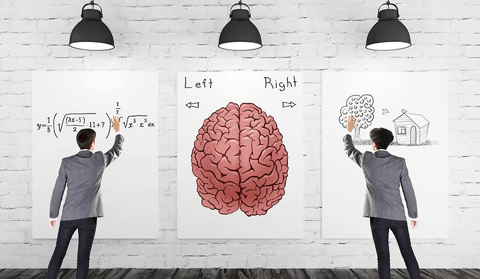 苦手であること、つまり普段は活躍していない脳の分野がある。左右ある脳をバランスよく使おう。