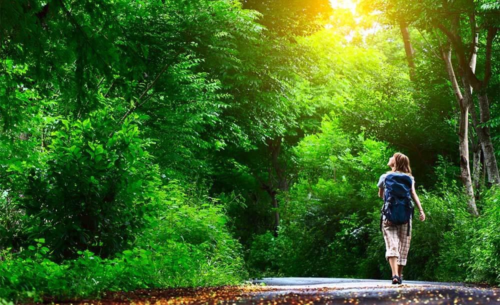 森の中を歩く。体で感じる超高周波はハイパーソニック効果があり、リラックス効果があります。