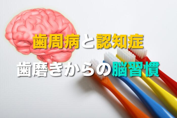 歯磨きで脳磨き?!歯周病菌の脳へのリスクとは